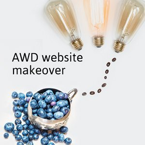 Adler Web Design website makeover